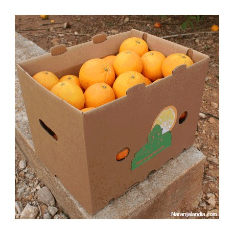 Naranja Navel Lane de mesa (Caja de 15Kg)