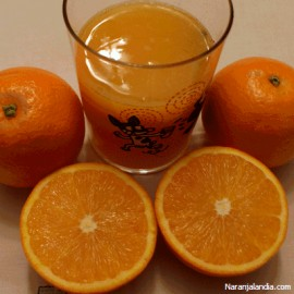 Naranja Navel Lane de suc (Caja de 10Kg)