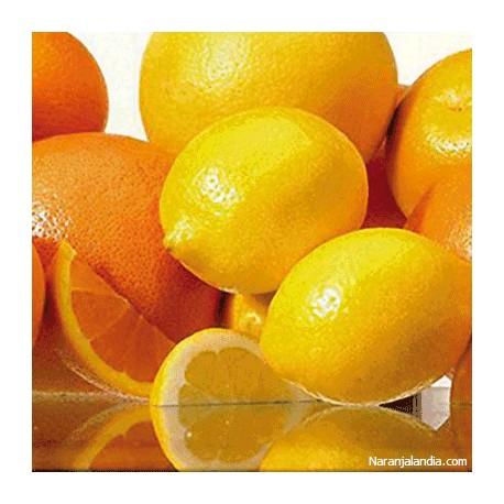 Naranjas de zumo y Limones (Caja de 15kg)